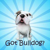 gotbulldog