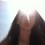 claire_nicosia