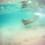 beachjeep2011