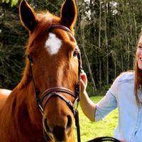 all_equestrian_