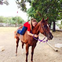 horselover11
